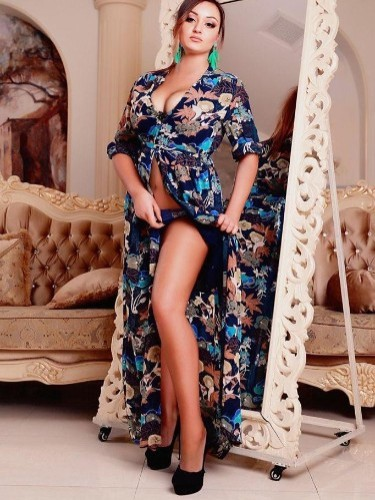Sex ad by kinky escort Polina Ukr (23) in Istanbul - Photo: 6