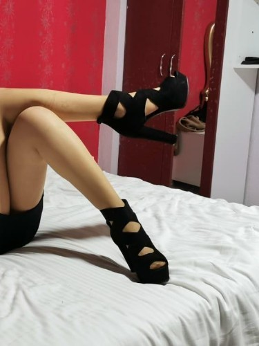 Sex ad by kinky escort Dina (19) in Istanbul - Photo: 2